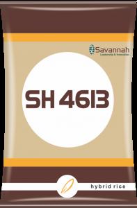 SH413