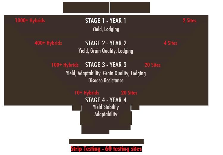 hybrid_testing_funnel
