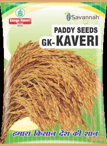 GK Kaveri Packshot